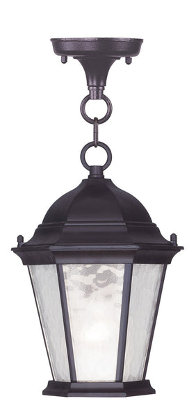 Livex 7559-07 Hamilton 1 Light 8 inch Bronze Outdoor Hanging Lantern in Clear Water