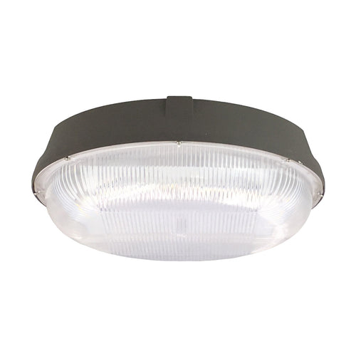 Elitco Lighting CAN50WR12 CAN Series LED 11 inch Dark Bronze Outdoor Canopy Light