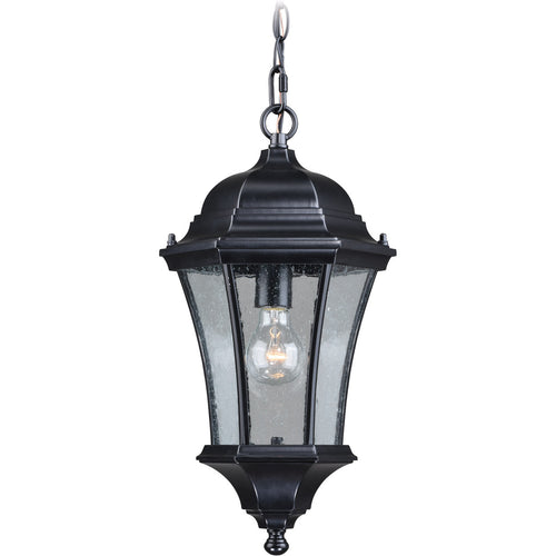Vaxcel Aberdeen 1 Light 10 inch Shiny Black Outdoor Pendant