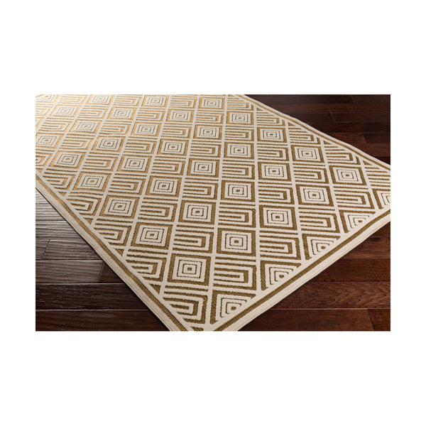 Surya Portera 90 X 60 inch Neutral and Brown Outdoor Area Rug Polypropylene
