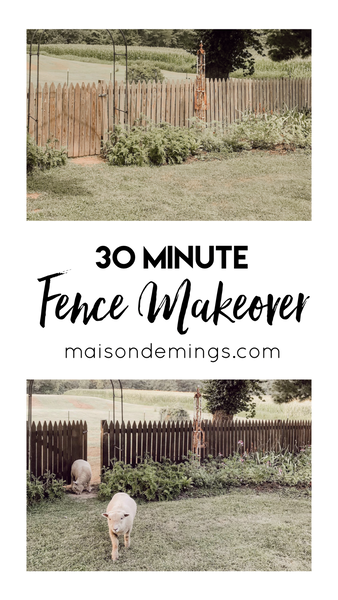 Fence Makeover