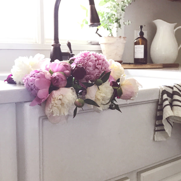 Farmhouse Sink Dreams