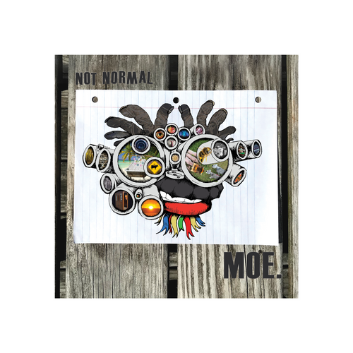 "Limited Edition - moe. Not Normal 2x10"" Gatefold LP (Webstore Exclusive)"
