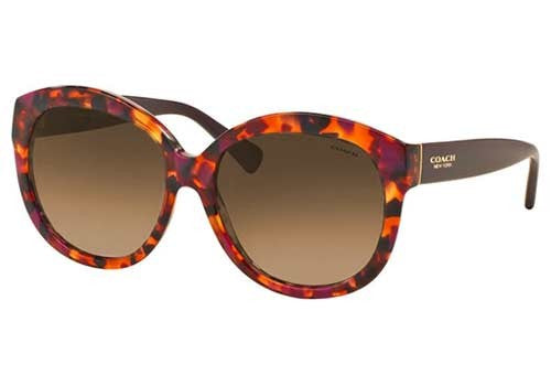 Coach HC8159 Prescription Sunglasses
