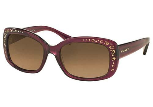 Coach HC8161 Prescription Sunglasses