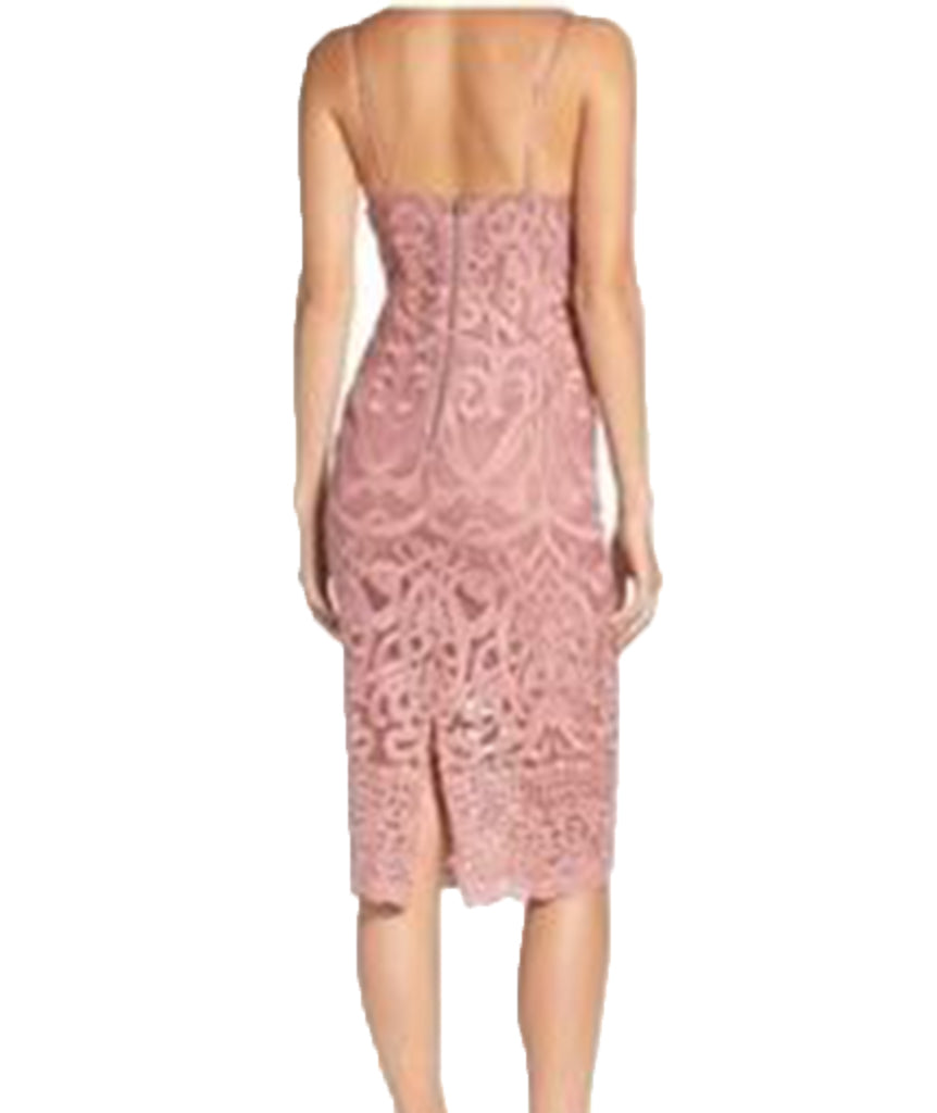 Bardot Blush Lace - Boro Dress Rentals