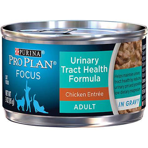Pro Plan Focus Urinary Tract Health with Chicken Cat Canned