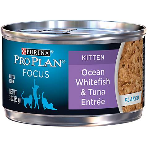 Pro Plan Focus Oceanfish & Tuna Kitten Cat Canned