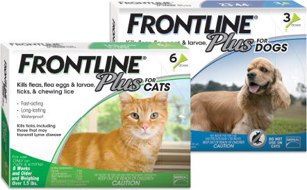 Frontline Plus Cats & Kittens