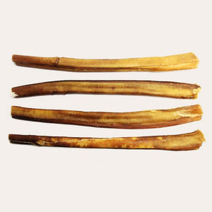 "12"" Jumbo Bully Stick- Low Odor"