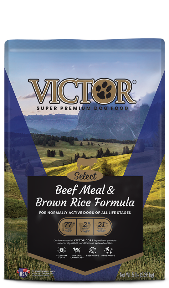 Victor Select Beef Meal and Brown Rice Dog