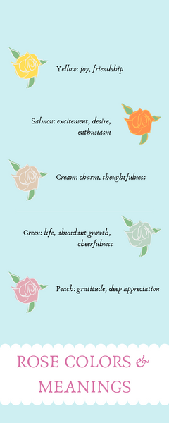 Rose colors and meanings