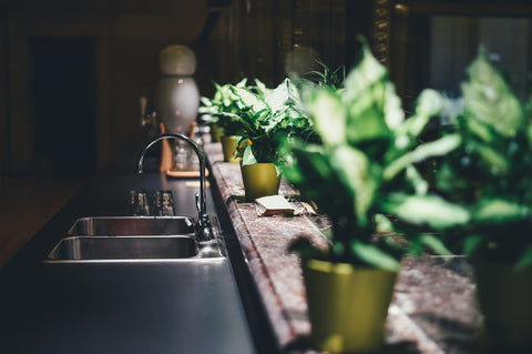 air-purifying plants kitchen