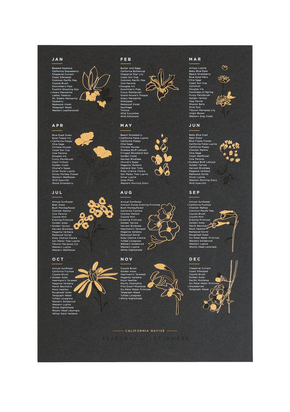 California Native Wildflower Print