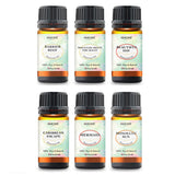 Island Getaway Collection - Box Set (6 Essential Oils)