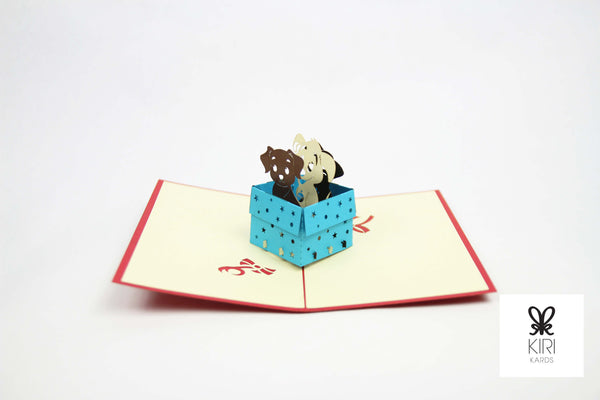 Puppies In A Box Pop Up Card