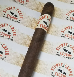 Mucho Gusto Cigar - 25 Pack