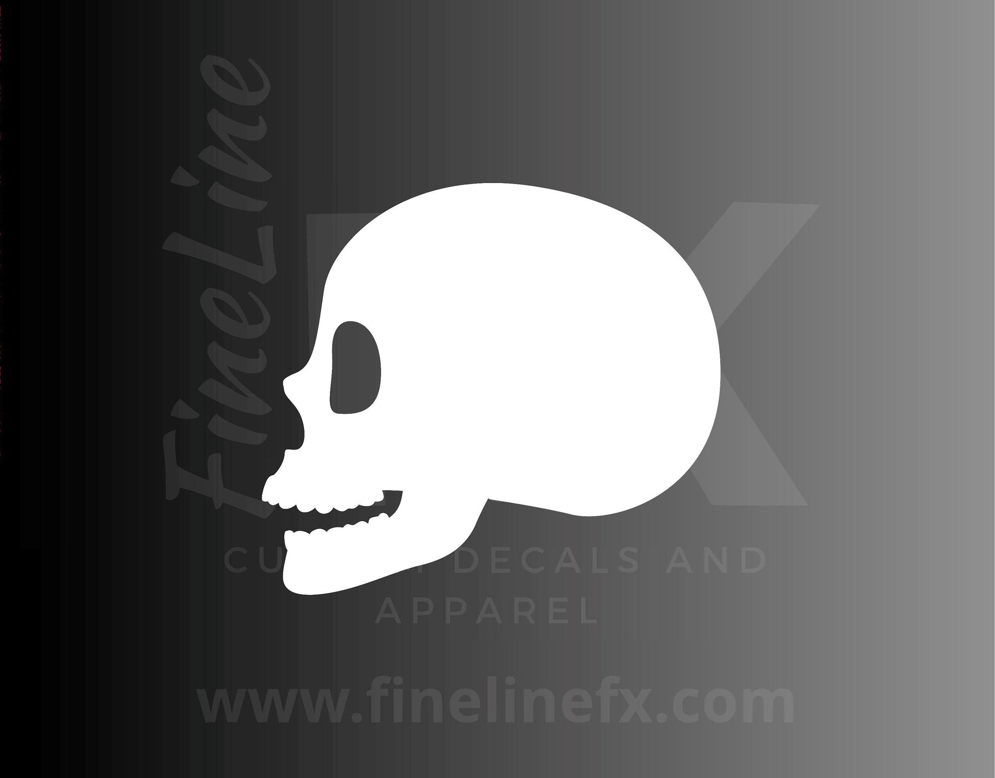 Skull Side Profile, Anatomy Vinyl Decal Sticker