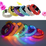 LED Leopard Print Collar