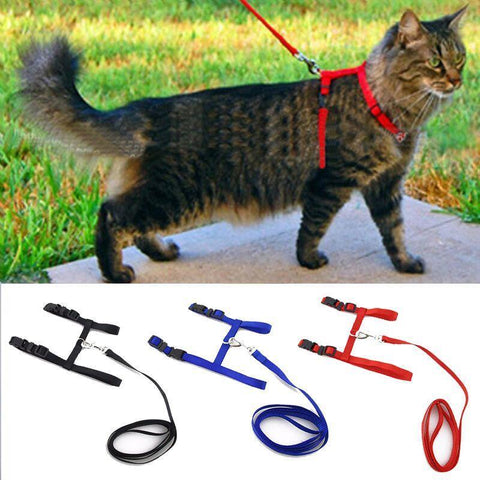 Adjustable Cat Harness and Leash