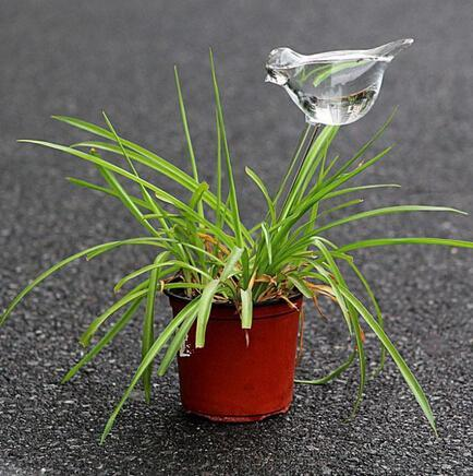 Self Watering Garden Glass Bird