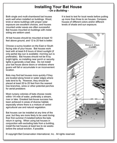 Installing Your Bat House on a Building pamphlet cover with pdf link