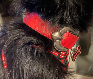 Red Ostrich Skin Leather Dog Collar Sz Small - City Girl Barn Treasures