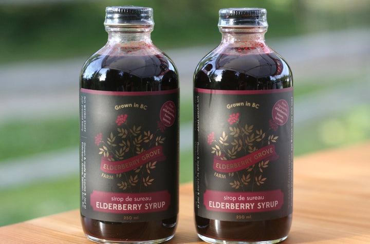 elderberry syrup, elderberry shrub, elderberry juice
