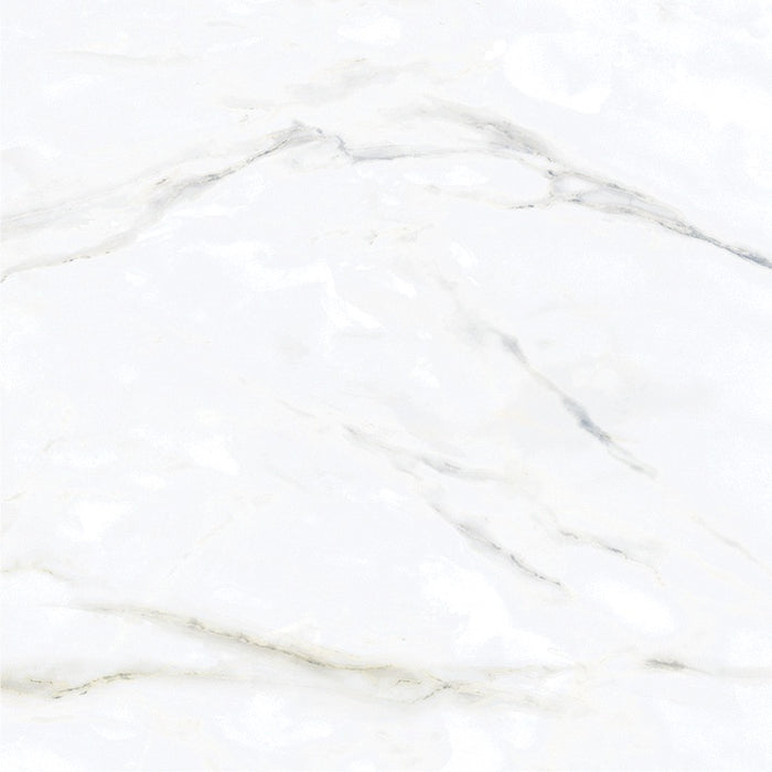 "Carrara HD 61x61 (24""x24"") 6PPB 4.01sqft/p"