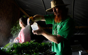 Functional Remedies - About Us (image of Eric Gostin spraying plants))