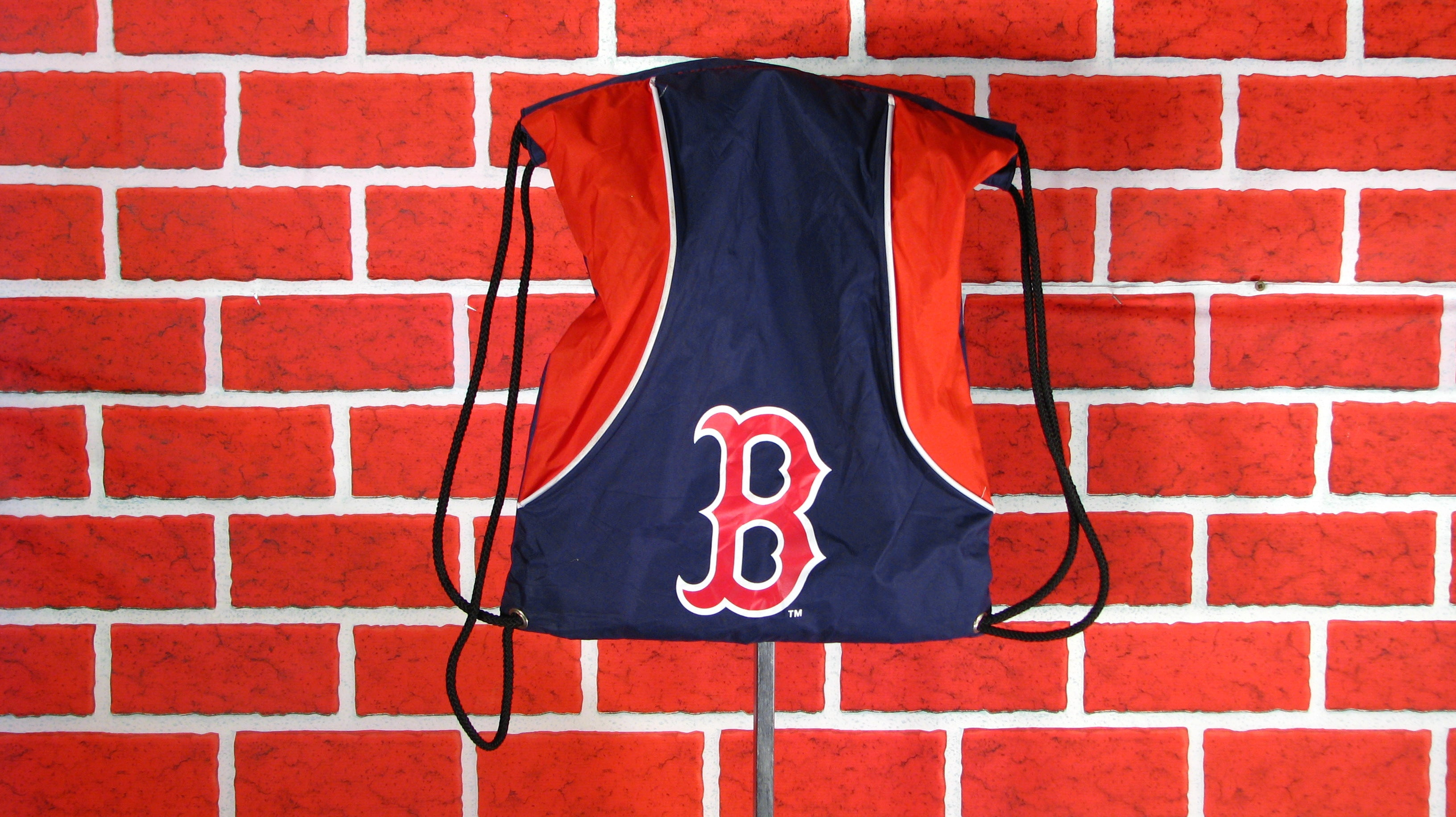 Boston Red Sox back pack/ book bag