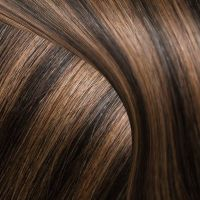 BALAYAGE - Jet Black & Chestnut Flash Brown