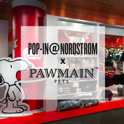 Nordstrom Pop-In X Pawmain Pets