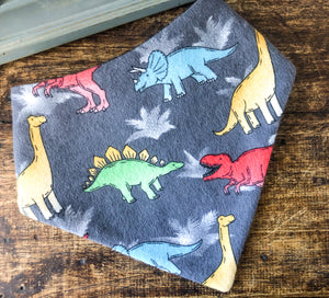 Bandy Bibs - Dinos Rule