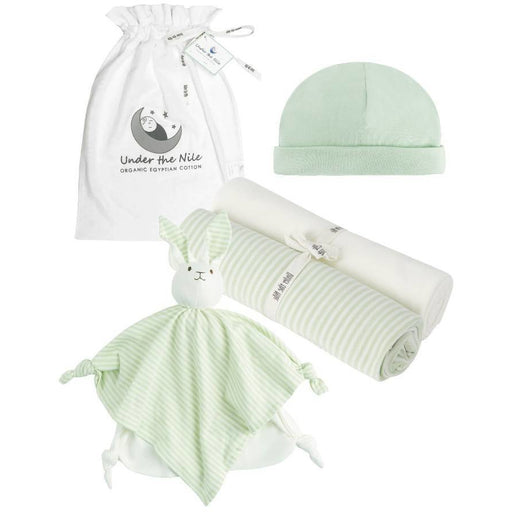 Stripe Essentials Gift Bag Set - Sage
