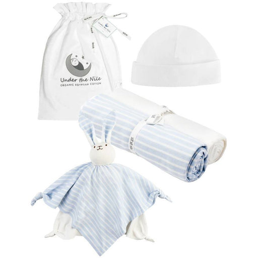 Stripe Essentials Gift Bag Set - Blue