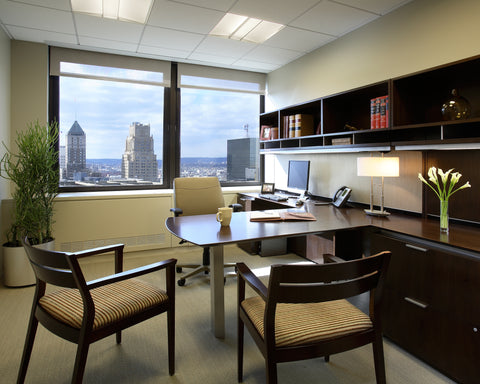 Friedman Kaplan Seiler & Adelman - Private Office
