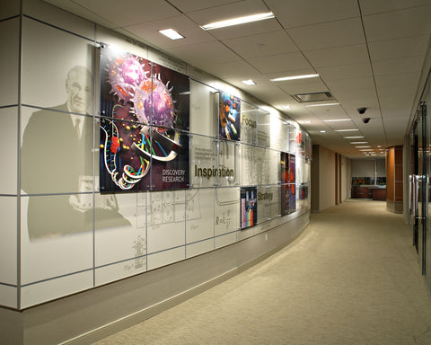 Beckman Coulter Inc - Accent Wall
