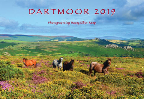 2019 Dartmoor Calendar Now Out