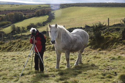 The man behind the camera with Callum my Highland pony directing!