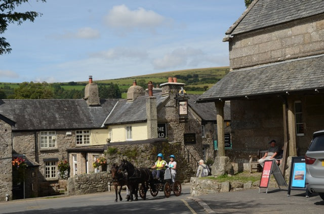 Pony and Trap drive through Widecombe-in-the-Moor