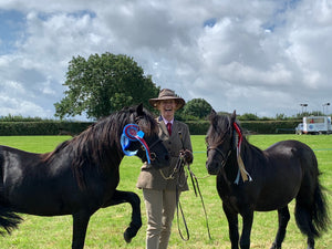 My black boys ... winners at the Dartmoor Pony Show!