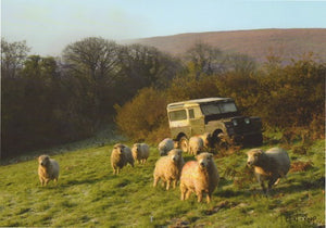 S145 - Landrover Sheep - Scripture Card - Rectangle
