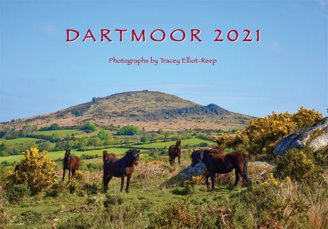 CA021x2 - Dartmoor 2021 Calendar (2 for £17)