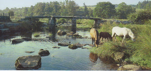P043 - Postbridge - Postcard - Panoramic - Pack of 10