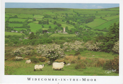 P043 - Widecombe in Spring - Postcard - Regular - Pack of 10
