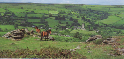 P045 - Widecombe in the Moor - Postcard - Panoramic - Pack of 10