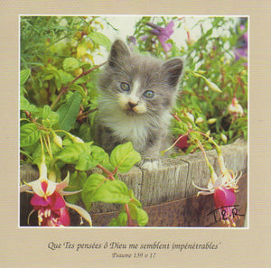 FS049 - Chatton - French Scripture Card - Square