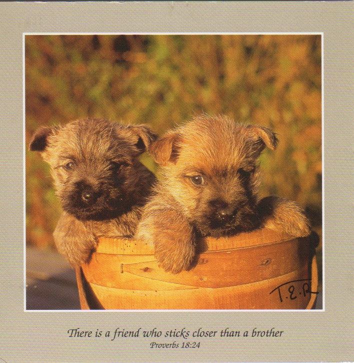 S051 - Sticking Together - Scripture Card - Square