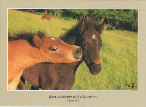 S055 - Pony Kisses - Scripture Card - Rectangle